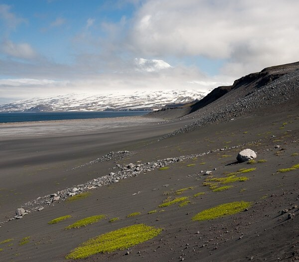 The beaches and slopes of Jan Mayen