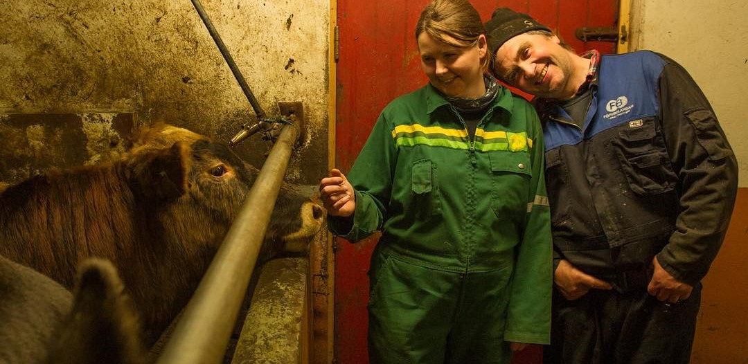 Lauga and Eyberg with their cows in the barn