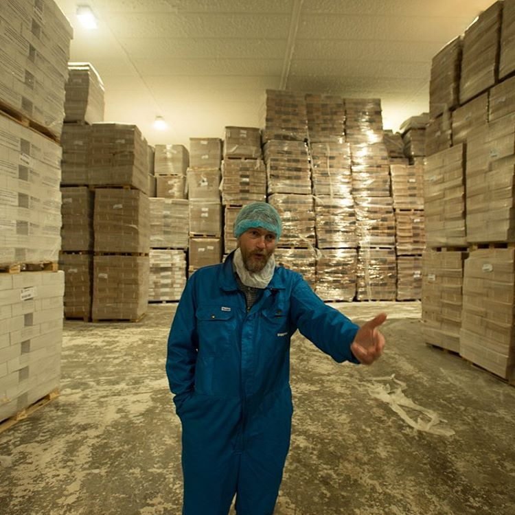 Siggeir Stefánsson shows us around the fish plant's giant freezer