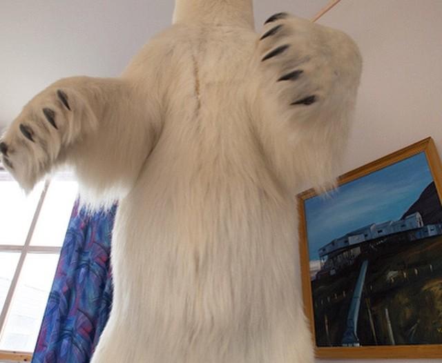 A taxidermied polar bear looms above the photographer