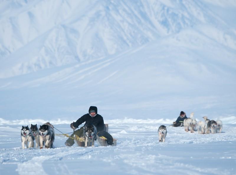 Two dog sled teams racing.