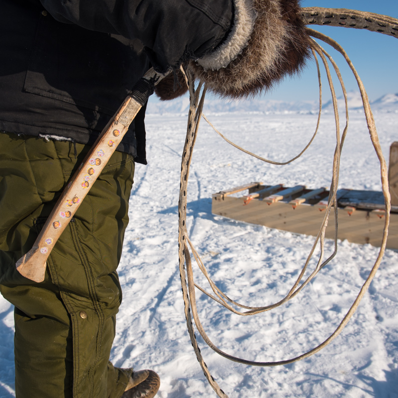 A closeup of the tool used to guide a dog sled team.
