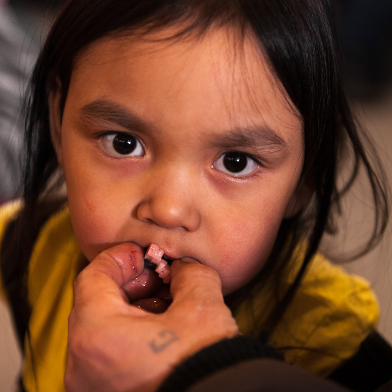 Alexandria Siakuluk, a little girl from Pond Inlet, eats a piece of narwhal skin from her father's hand.