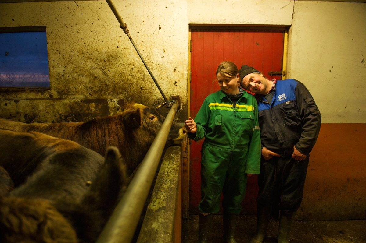 Gudlaug and Euberg stand looking livingly at some of their herd of dairy cows.