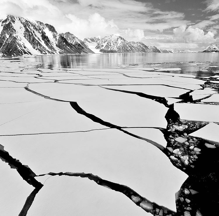 Cracks in a sheet of ice over water.