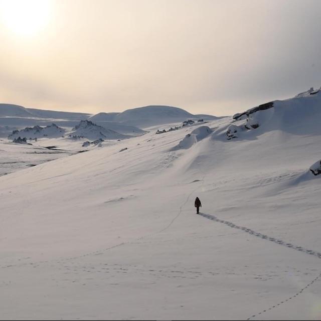 Jenny wanders into the Alaskan tundra on an early morning.