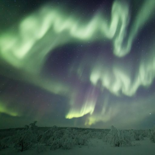 The aurora on the Finnish side of Lapland, in the Sámi homeland.