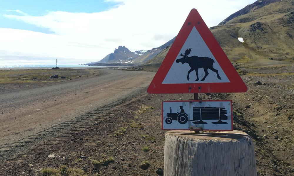 None of these things exist on Jan Mayen, but it's good to have a sense of humor so far from civilization.
