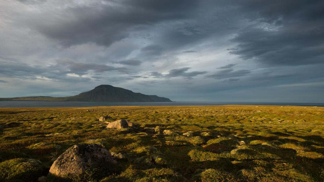 Seventy-five kilometres southeast of Arctic Henge is the open bay of Finnafjordur.