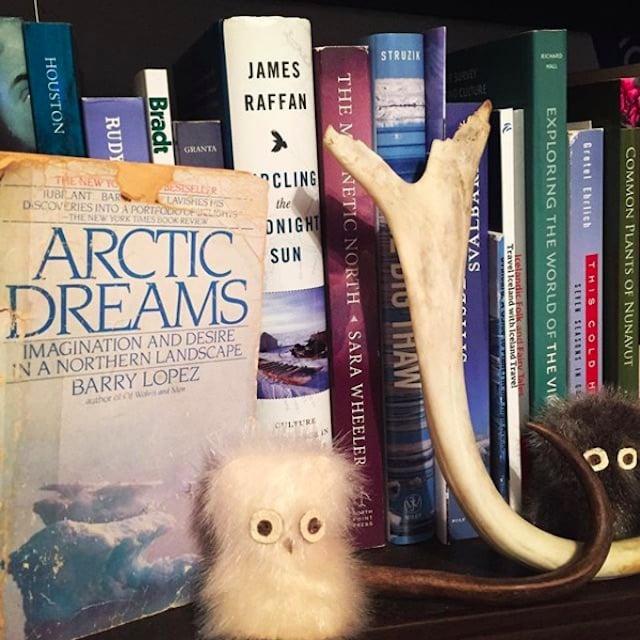Jenny's library in Ottawa.