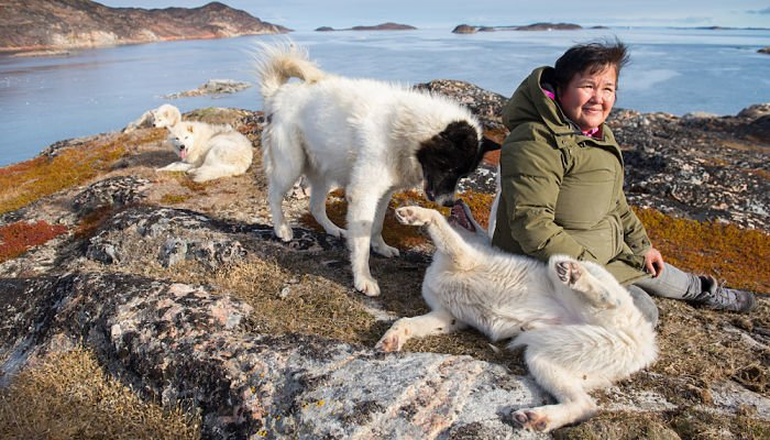 Greenland Dog Project founder, Sorine Petersen spends time with some of the abandonded sled dogs she has rescued and transported to an uninhabited island near the town of Assiaat, west Greenland.
